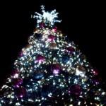福井・アップルロードのクリスマスツリーイルミネーション