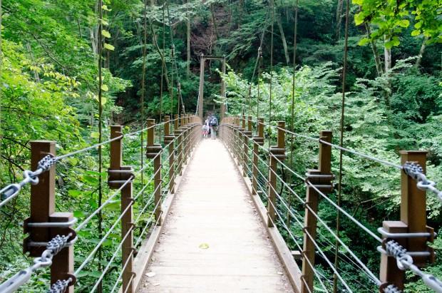 ダイビングの吊り橋効果