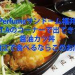 perfume COSMIC EXPLORERで出てきた福井と言えば醤油カツ丼の情報